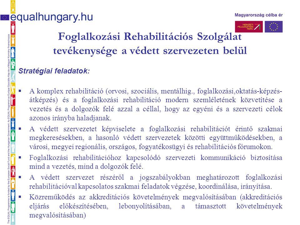 Foglalkozási Rehabilitációs Szolgálat tevékenysége a védett szervezeten belül