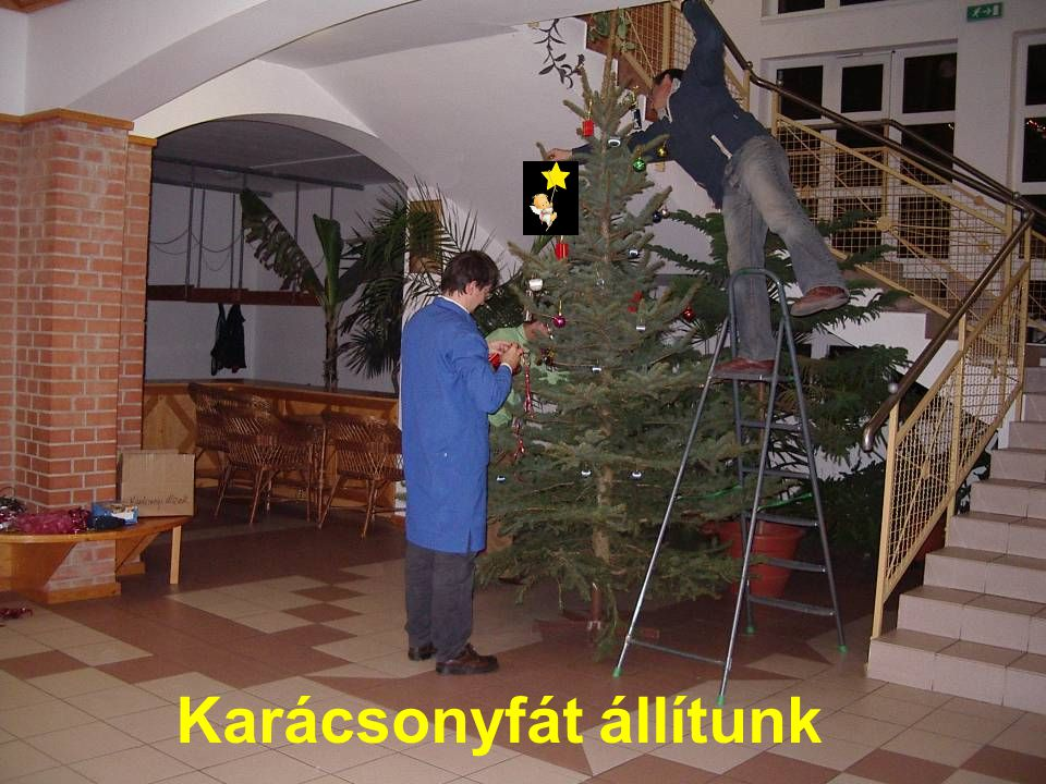 Karácsonyfát állítunk
