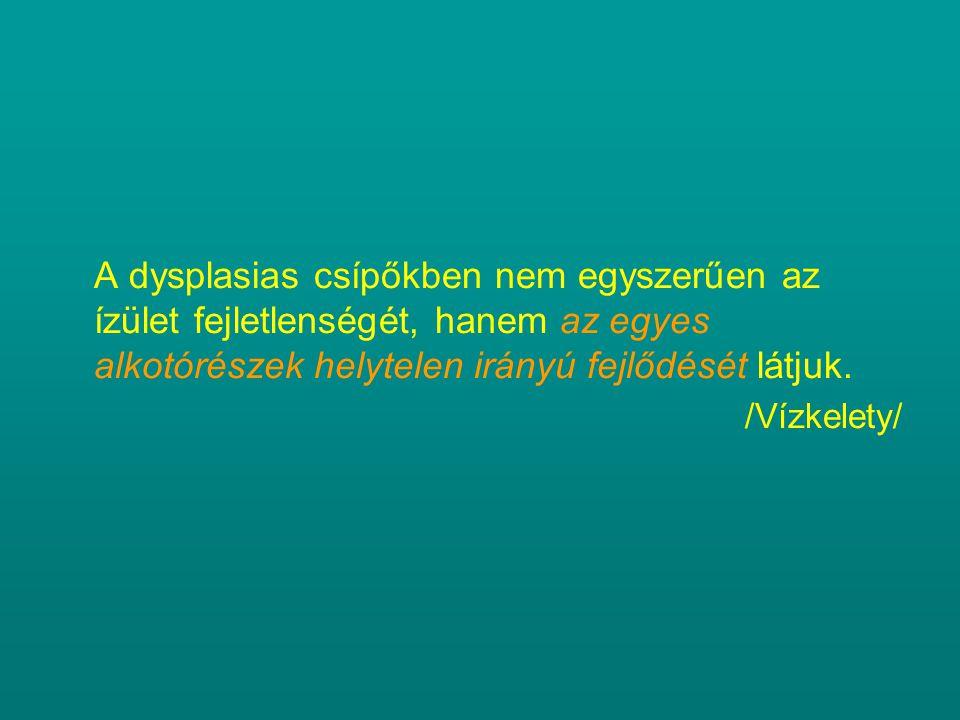 A dysplasias csípőkben nem egyszerűen az ízület fejletlenségét, hanem az egyes alkotórészek helytelen irányú fejlődését látjuk.