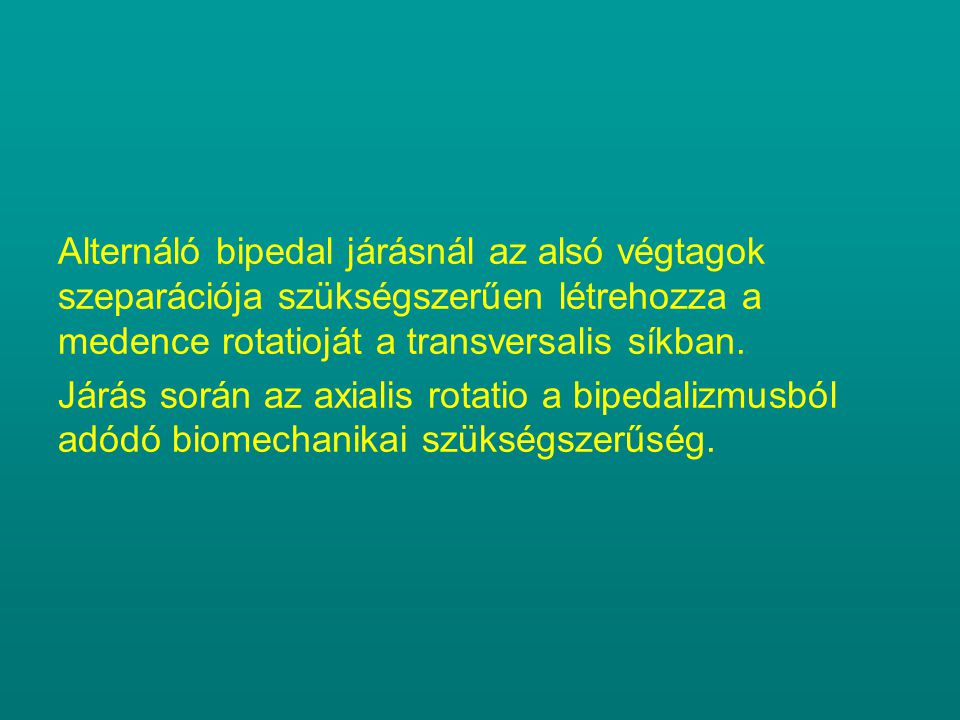 Alternáló bipedal járásnál az alsó végtagok szeparációja szükségszerűen létrehozza a medence rotatioját a transversalis síkban.