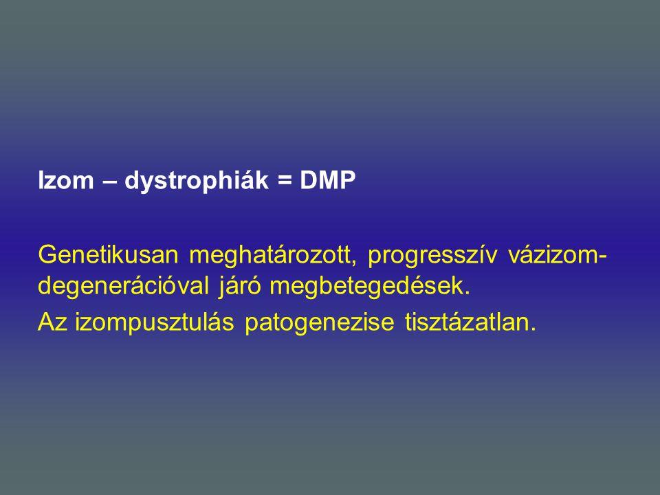 Izom – dystrophiák = DMP Genetikusan meghatározott, progresszív vázizom-degenerációval járó megbetegedések.
