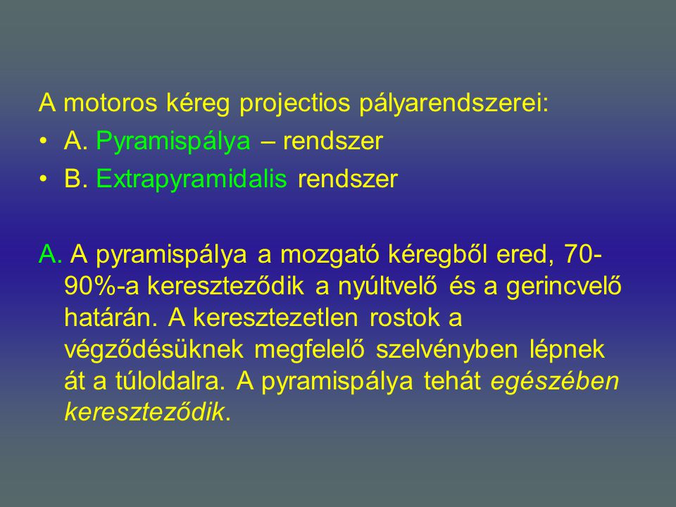 A motoros kéreg projectios pályarendszerei: