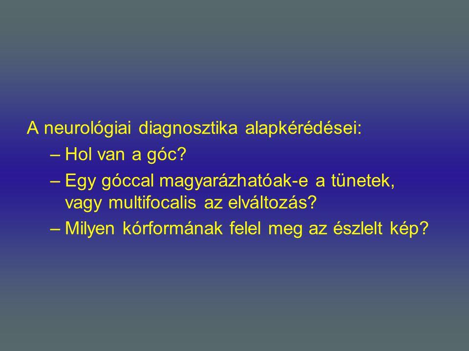 A neurológiai diagnosztika alapkérédései: