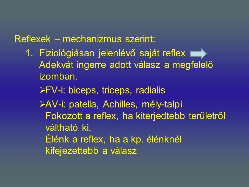 Reflexek – mechanizmus szerint: