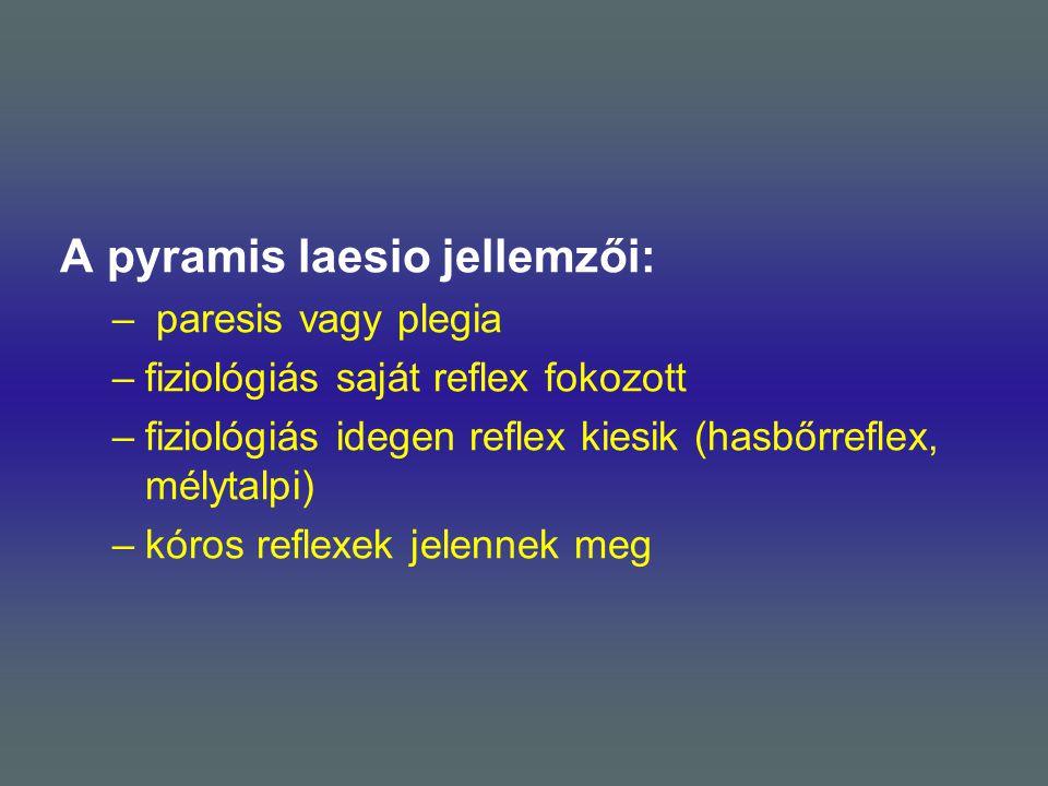 A pyramis laesio jellemzői:
