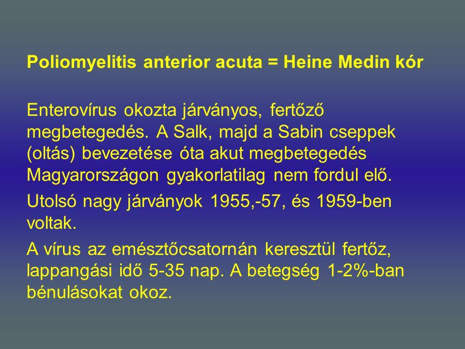 Poliomyelitis anterior acuta = Heine Medin kór Enterovírus okozta járványos, fertőző megbetegedés.