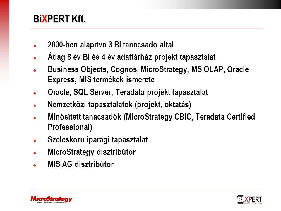 BiXPERT Kft. 2000-ben alapítva 3 BI tanácsadó által