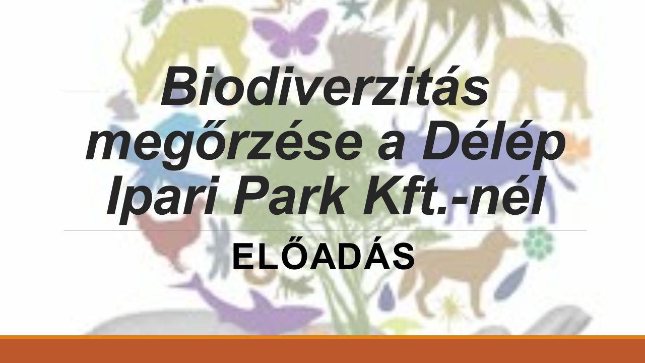 Biodiverzitás megőrzése a Délép Ipari Park Kft.-nél