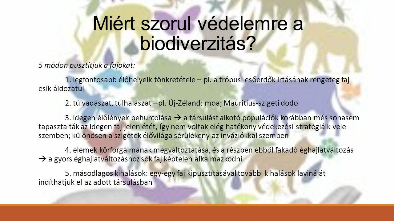Miért szorul védelemre a biodiverzitás