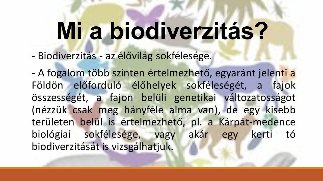 Mi a biodiverzitás - Biodiverzitás - az élővilág sokfélesége.