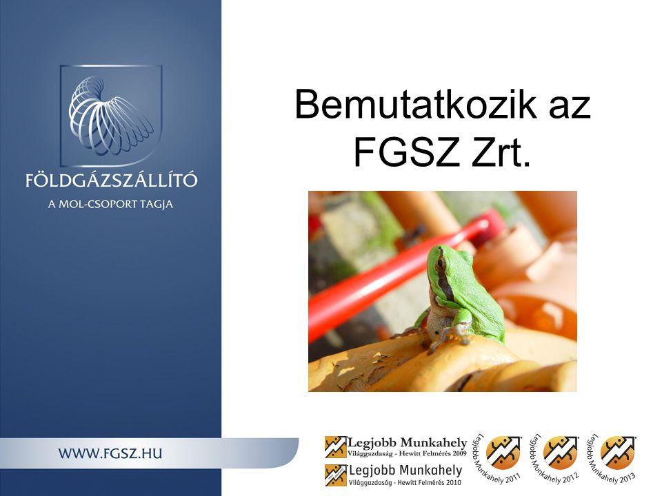Bemutatkozik az FGSZ Zrt.