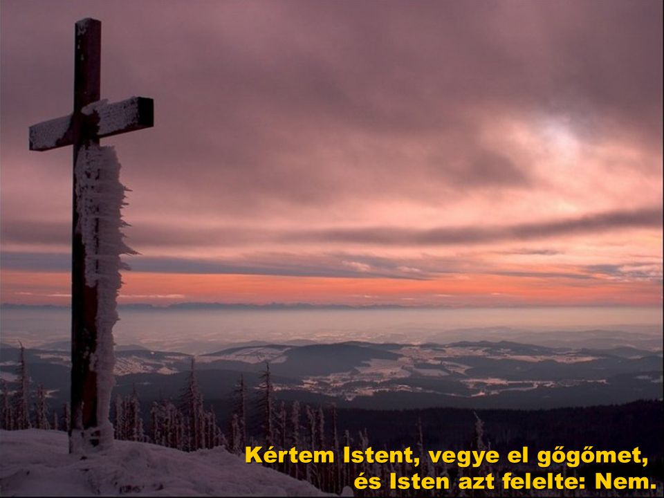 Kértem Istent, vegye el gőgőmet, és Isten azt felelte: Nem.