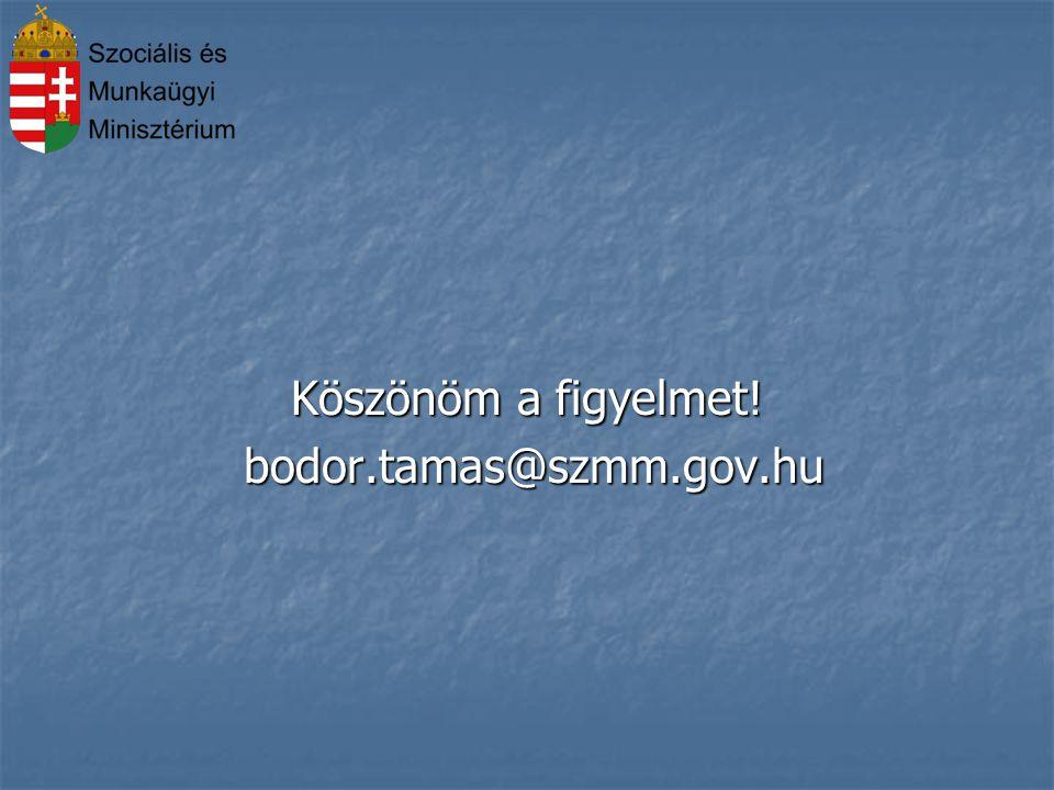 Köszönöm a figyelmet! bodor.tamas@szmm.gov.hu 10