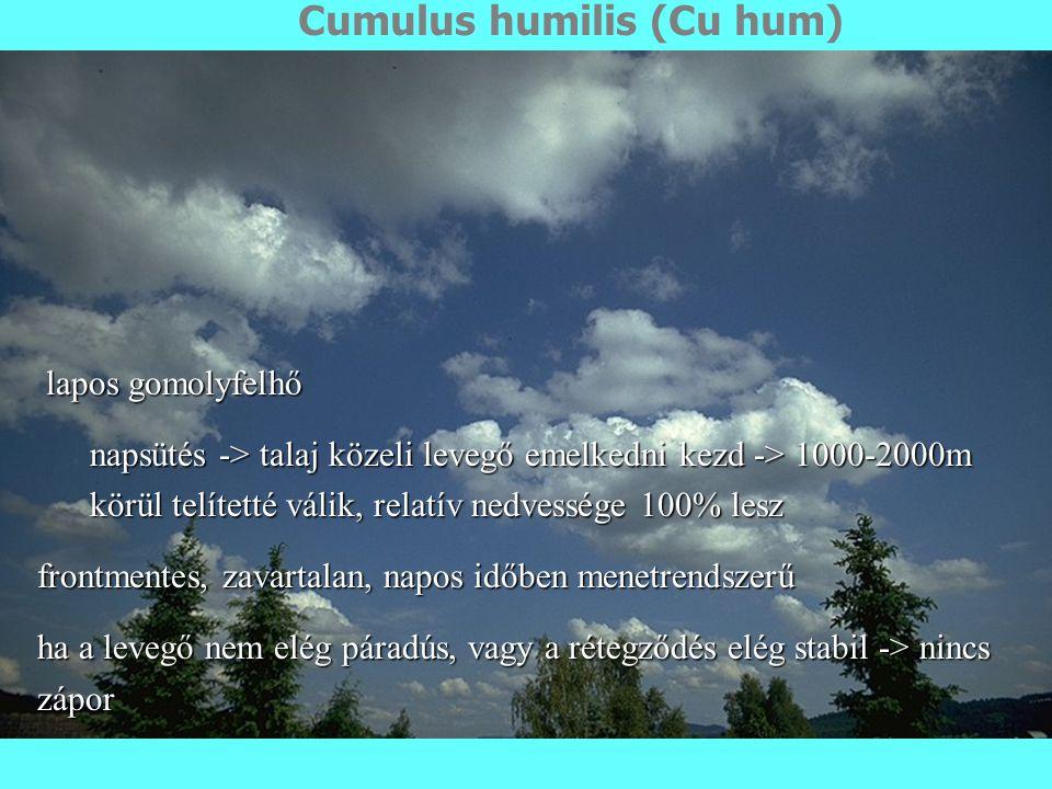 Cumulus humilis (Cu hum)