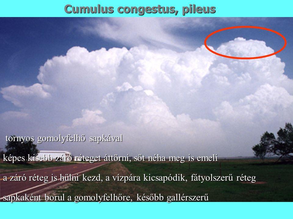 Cumulus congestus, pileus