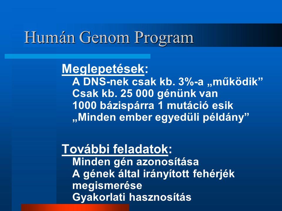 Humán Genom Program