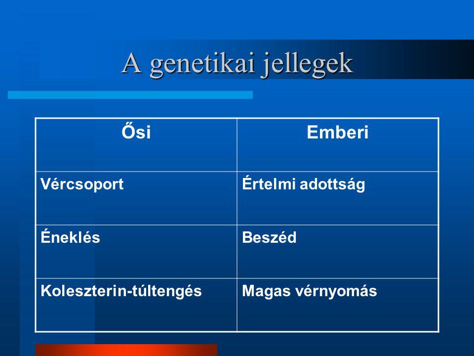 A genetikai jellegek Ősi Emberi Vércsoport Értelmi adottság Éneklés