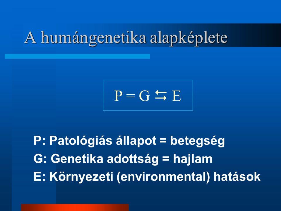 A humángenetika alapképlete
