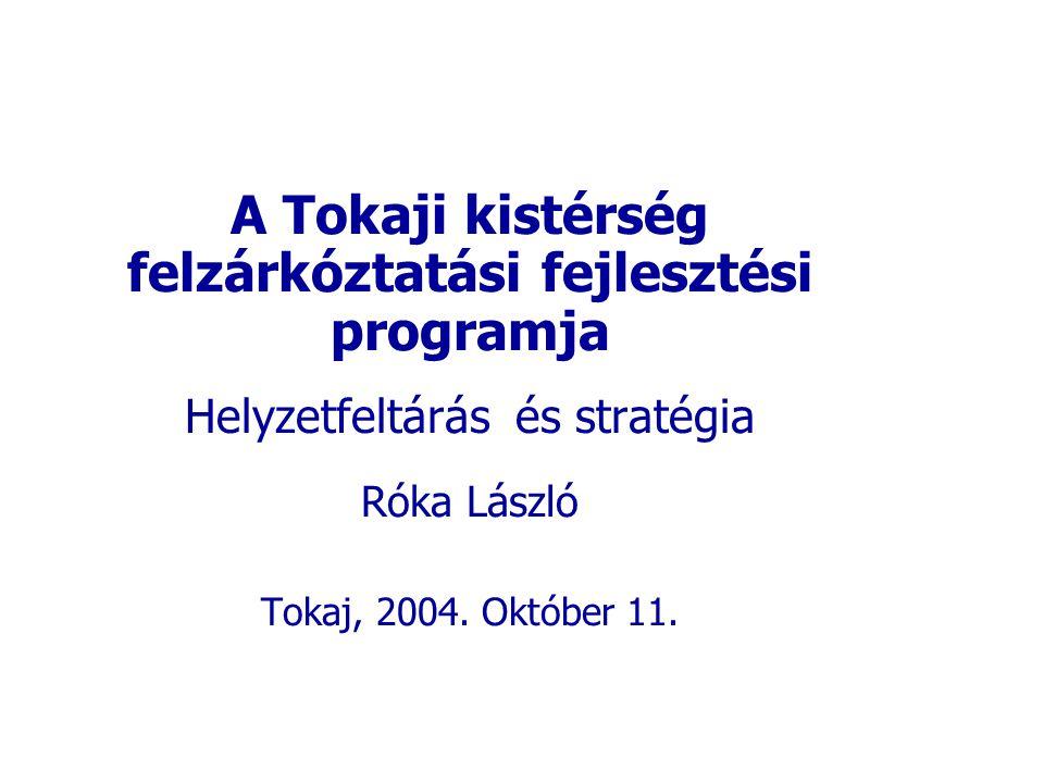 A Tokaji kistérség felzárkóztatási fejlesztési programja Helyzetfeltárás és stratégia Róka László Tokaj, 2004.