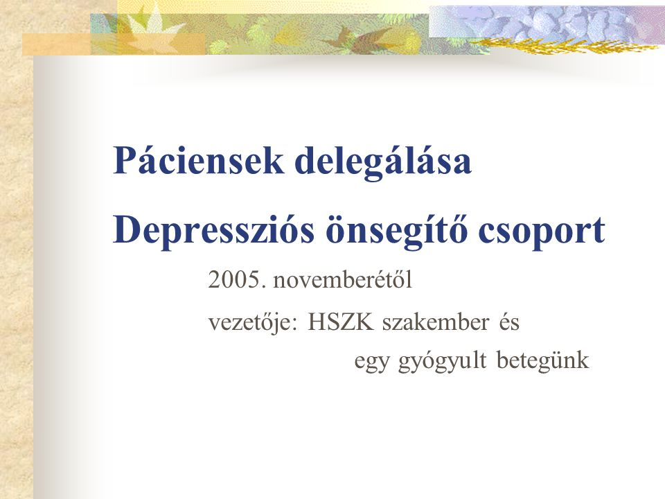 Páciensek delegálása Depressziós önsegítő csoport 2005. novemberétől