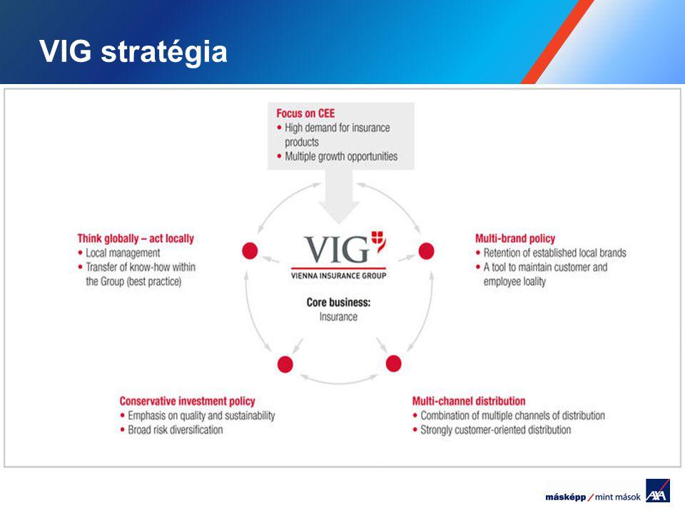 VIG stratégia