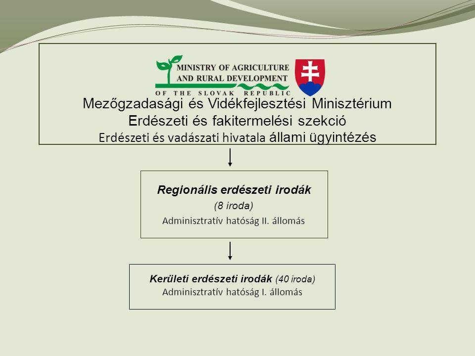 Regionális erdészeti irodák