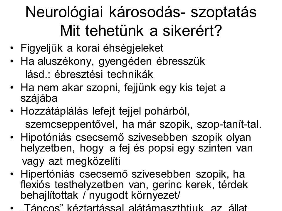 Neurológiai károsodás- szoptatás Mit tehetünk a sikerért