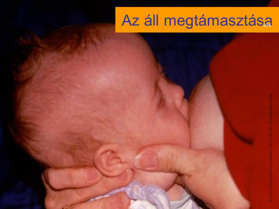 Az áll megtámasztása 10/6 Kay Hoover and Barbara Wilson-Clay, from The Breastfeeding Atlas