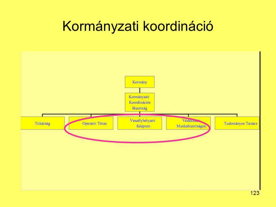 Kormányzati koordináció