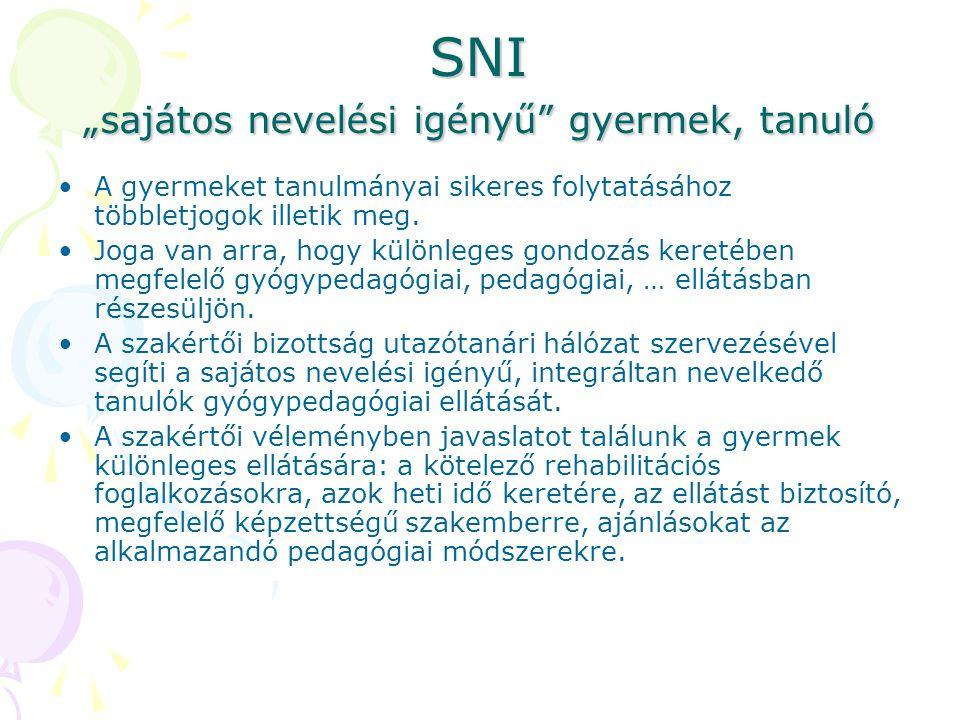 "SNI ""sajátos nevelési igényű gyermek, tanuló"