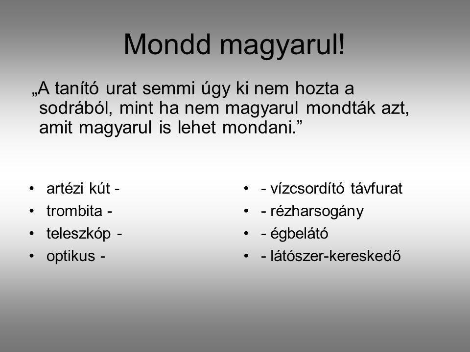 """Mondd magyarul! """"A tanító urat semmi úgy ki nem hozta a sodrából, mint ha nem magyarul mondták azt, amit magyarul is lehet mondani."""