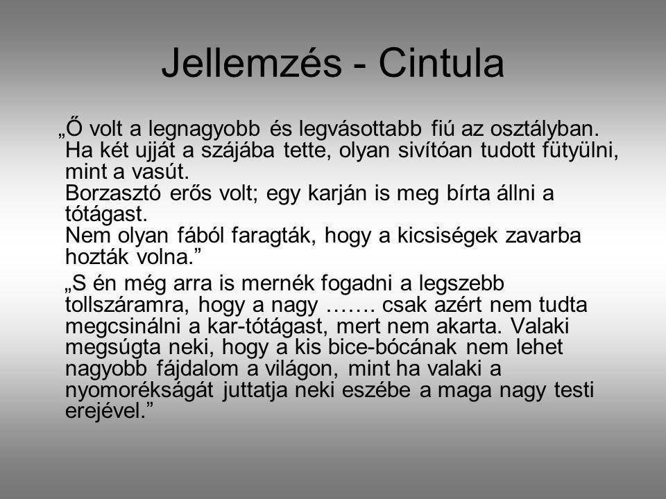 Jellemzés - Cintula