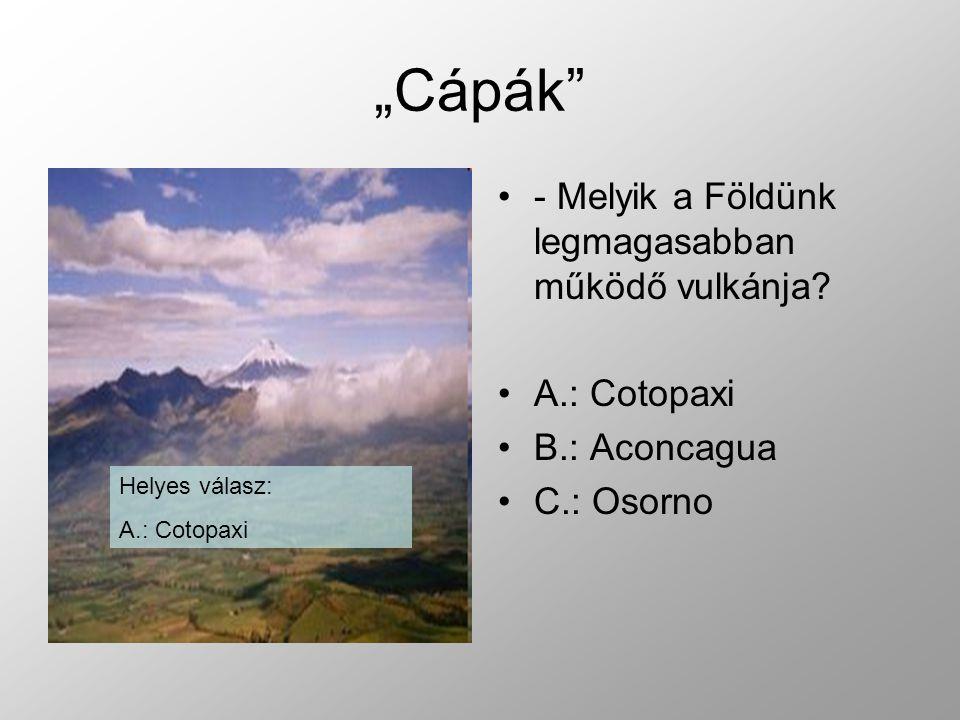 """""""Cápák - Melyik a Földünk legmagasabban működő vulkánja A.: Cotopaxi"""