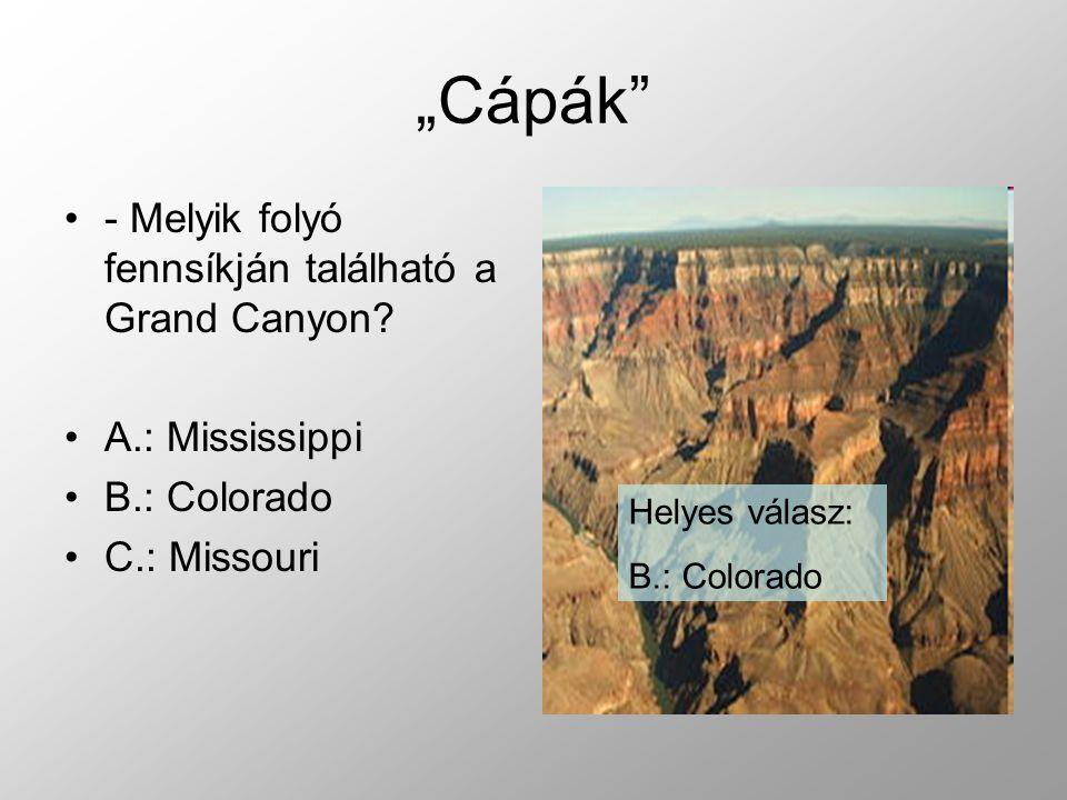 """""""Cápák - Melyik folyó fennsíkján található a Grand Canyon"""