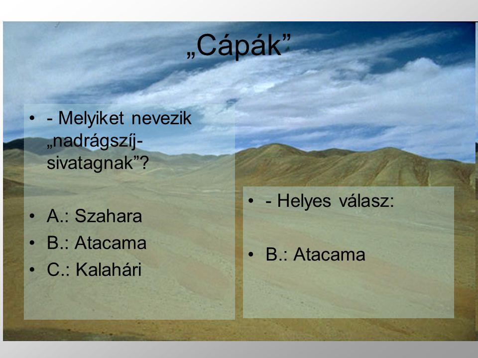 """""""Cápák - Melyiket nevezik """"nadrágszíj-sivatagnak A.: Szahara"""