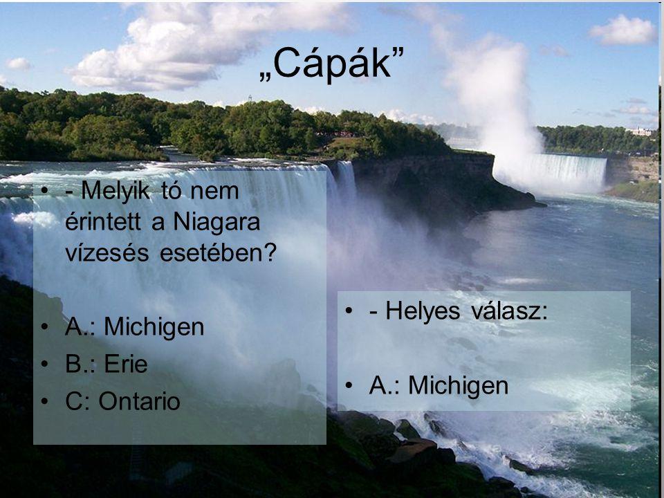 """""""Cápák - Melyik tó nem érintett a Niagara vízesés esetében"""