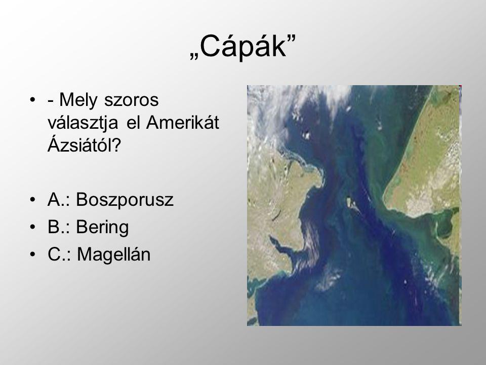 """""""Cápák - Mely szoros választja el Amerikát Ázsiától A.: Boszporusz"""