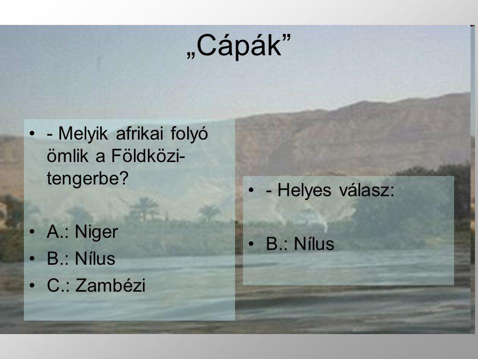 """""""Cápák - Melyik afrikai folyó ömlik a Földközi-tengerbe A.: Niger"""