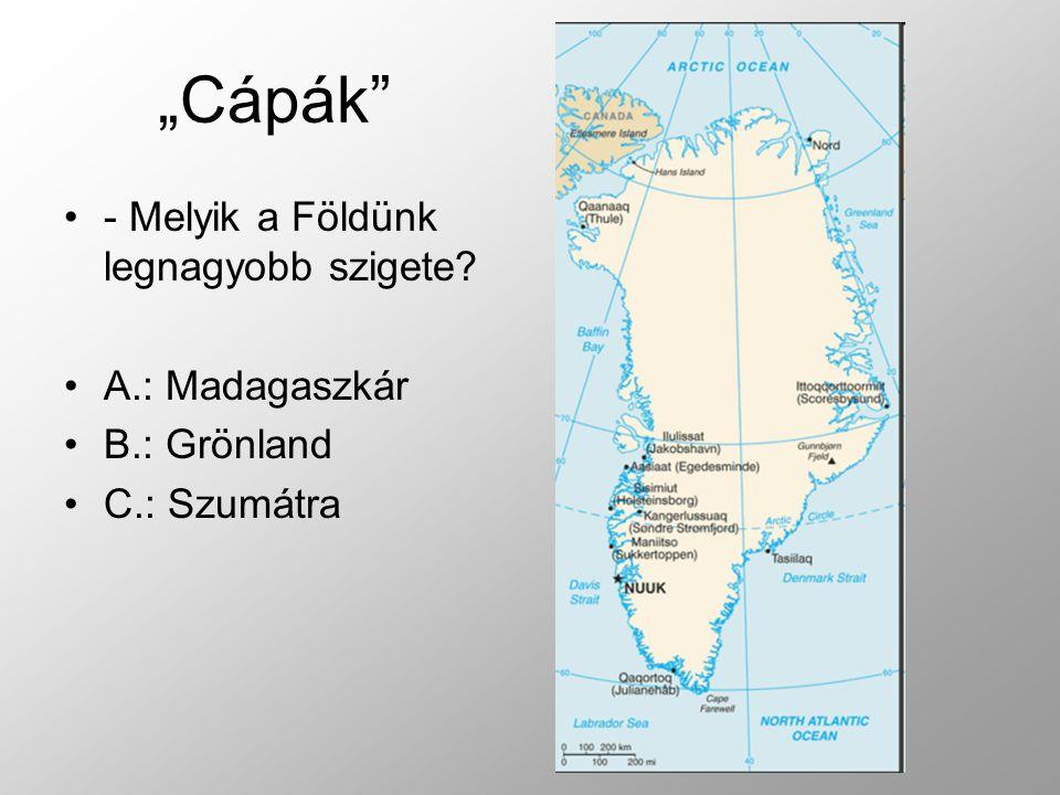 """""""Cápák - Melyik a Földünk legnagyobb szigete A.: Madagaszkár"""