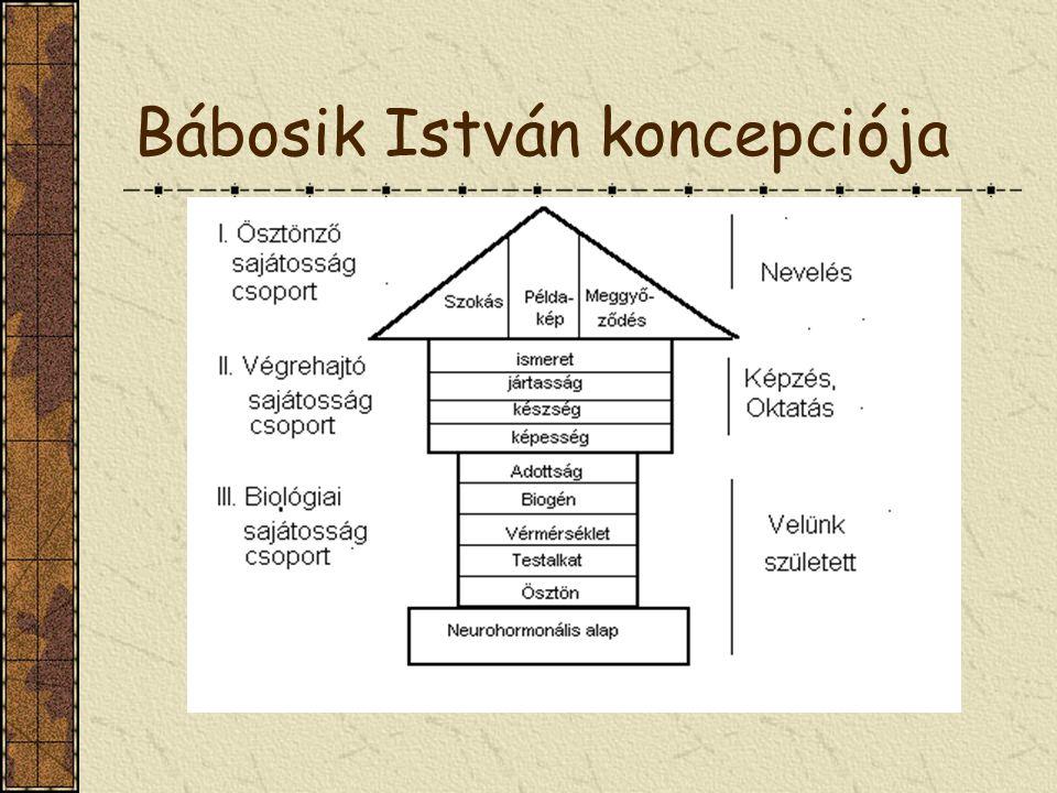 Bábosik István koncepciója