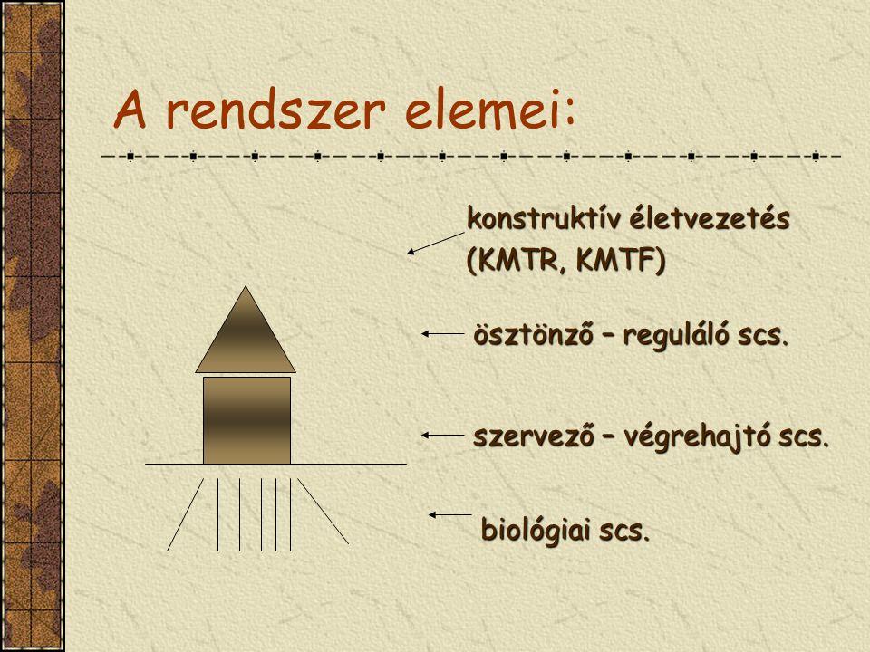 A rendszer elemei: konstruktív életvezetés (KMTR, KMTF)