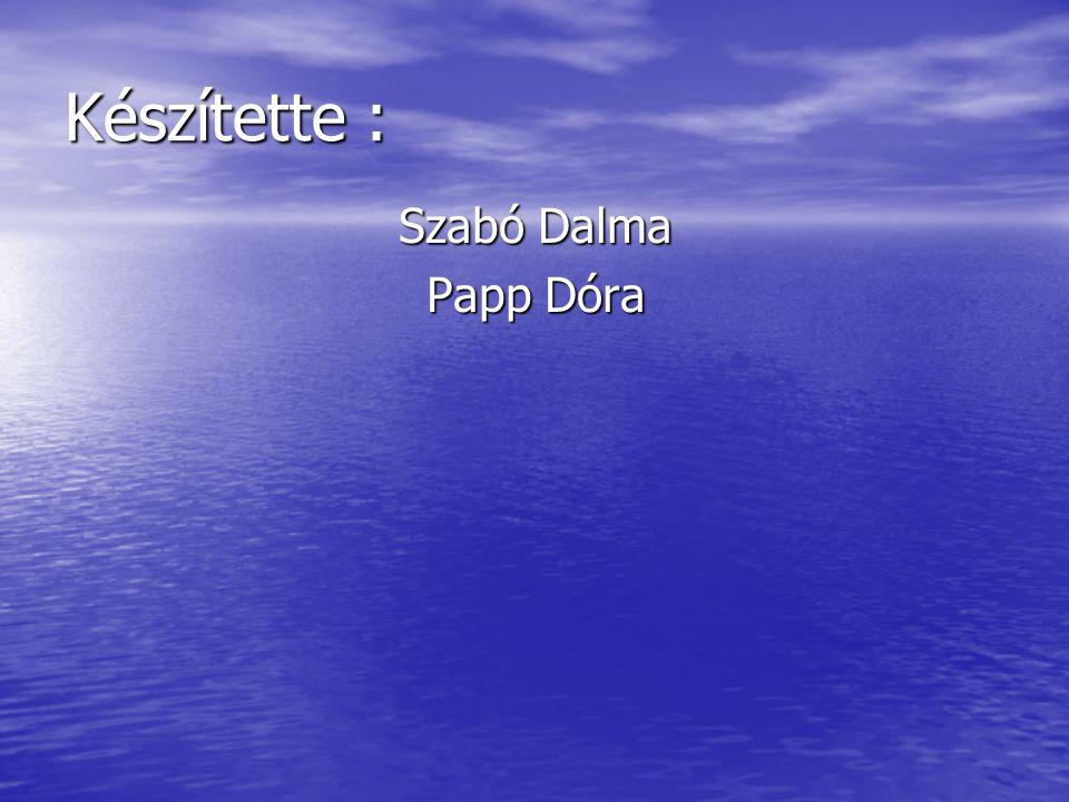 Készítette : Szabó Dalma Papp Dóra