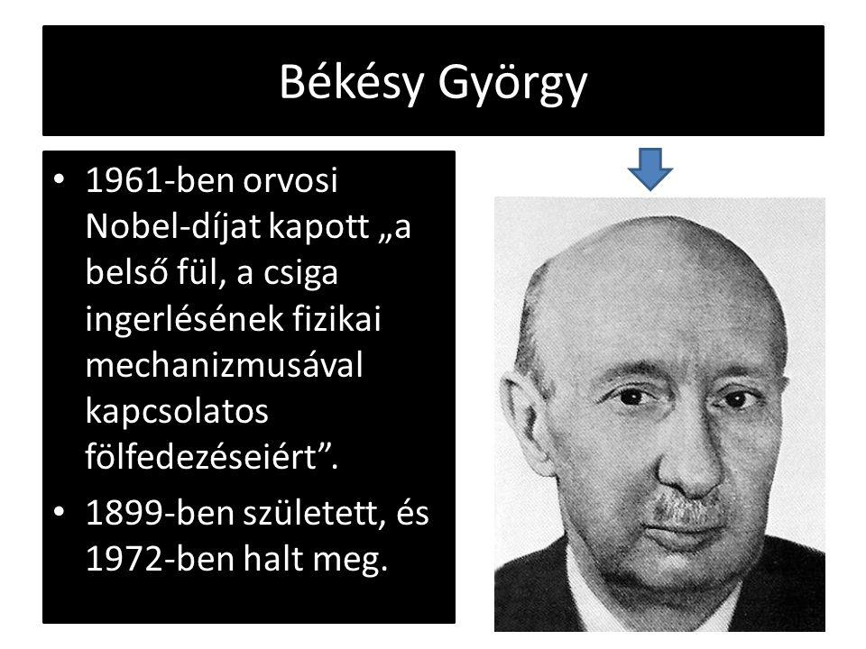 """Békésy György 1961-ben orvosi Nobel-díjat kapott """"a belső fül, a csiga ingerlésének fizikai mechanizmusával kapcsolatos fölfedezéseiért ."""