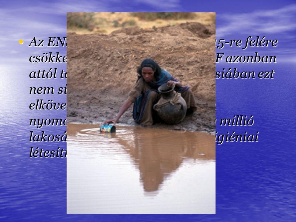 Az ENSZ célul tűzte ki, hogy 2015-re felére csökkenti a vízhiányt