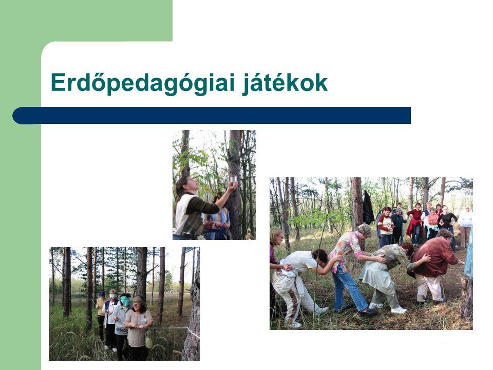 Erdőpedagógiai játékok