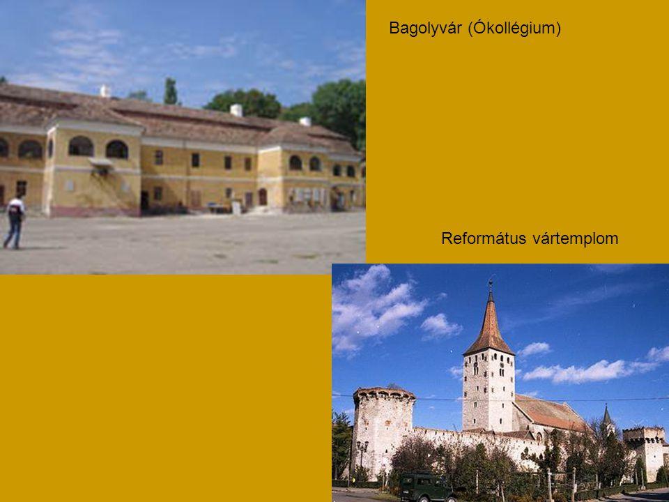 Bagolyvár (Ókollégium)
