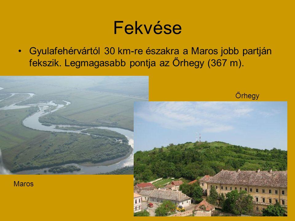 Fekvése Gyulafehérvártól 30 km-re északra a Maros jobb partján fekszik. Legmagasabb pontja az Őrhegy (367 m).