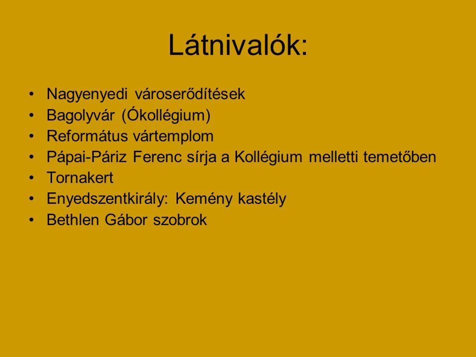 Látnivalók: Nagyenyedi városerődítések Bagolyvár (Ókollégium)