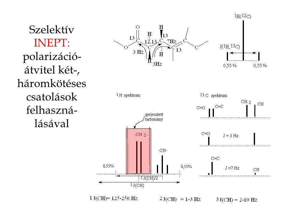 Szelektív INEPT: polarizáció-átvitel két-, háromkötéses csatolások felhaszná-lásával