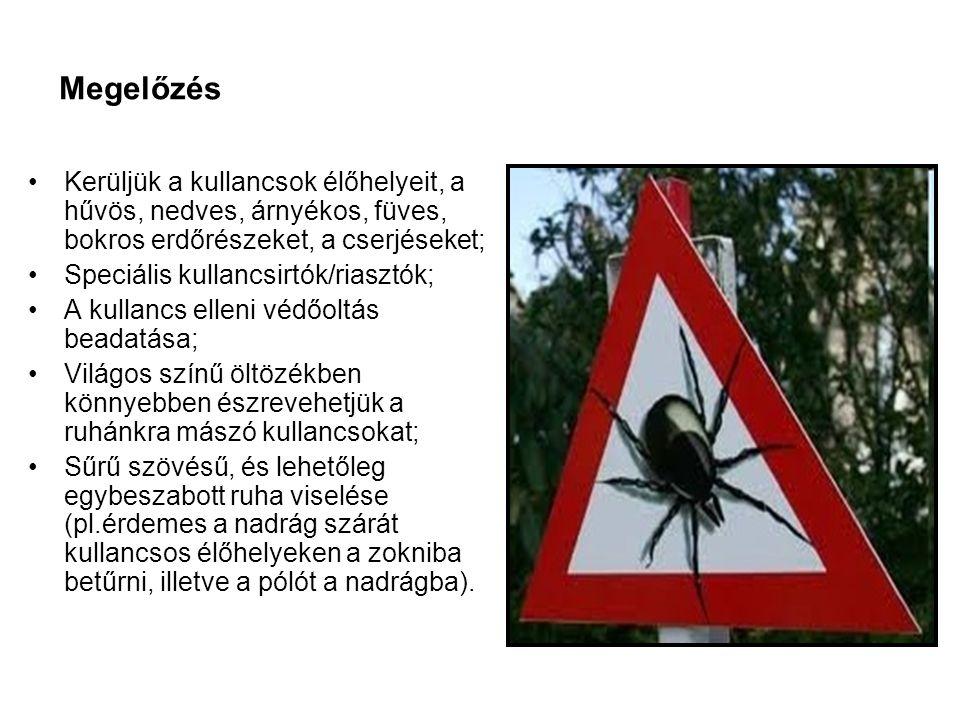Megelőzés Kerüljük a kullancsok élőhelyeit, a hűvös, nedves, árnyékos, füves, bokros erdőrészeket, a cserjéseket;